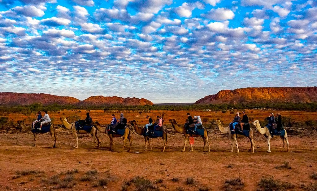 the camel tour against Ilparpa Ranges